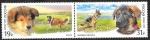 Stamps : Europe : Russia :  7725 y 7726 - Razas de perro, Pastor escocés y pastor alemán