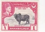 Sellos de Asia - Pakistán -  Sahiwal Bull-BAHAWALPUR