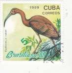 Sellos de America - Cuba -   ave- BRASILIANA'89
