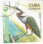 Stamps Cuba -   ave- BRASILIANA'89