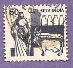 Stamps of the world : India :  INTERCAMBIO