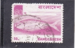 Stamps : Asia : Bangladesh :  Pez