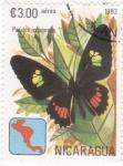 Stamps Nicaragua -  Mariposa