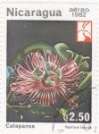 Stamps : America : Nicaragua :  Flor-Catapansa
