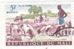 Sellos de Africa - Mali -  pastor y ganado