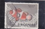 Sellos de Asia - Singapur -  pez tropical