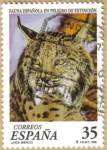 Stamps Europe - Spain -  FAUNA - LINCE IBERICO