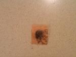 Stamps : America : Brazil :  Sello. Bicolor antiguo