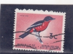 Stamps South Africa -    ave-