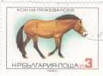 Sellos del Mundo : Europa : Bulgaria :  caballo-