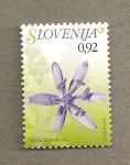 Stamps Slovenia -  Flora eslovena