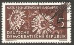 Sellos del Mundo : Europa : Alemania :  286 - Semana de protección a la Naruraleza