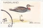 Stamps : Africa : Nagaland :    ave- pato rojo
