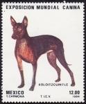 Sellos de America - México -  Exposicion mundial canina