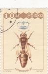 Sellos del Mundo : Europa : Polonia :  abeja reina