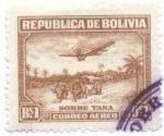 Sellos de America - Bolivia -  Paisajes del Oriente Boliviano