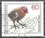 Sellos de Europa - Alemania -  Protege los animales.Ganso Común ( Fulica Atra).