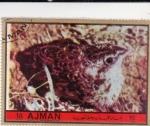 Sellos del Mundo : Asia : Emiratos_Árabes_Unidos : polluelo