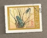 Sellos de Asia - Vietnam -  Coleoptero