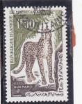 Sellos de Asia - Mauritania -  guepardo