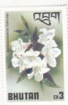 Stamps : Asia : Bhutan :  flores