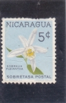 Sellos del Mundo : America : Nicaragua : flores- sobralia