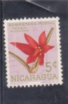 Stamps : America : Nicaragua :  flores- hexisia