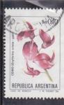 Sellos de America - Argentina -  flores- CEIBO