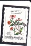 Stamps : America : Argentina :  flores- CHINITA DEL CAMPO