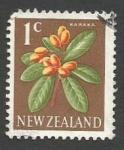 Sellos de Oceania - Nueva Zelanda -  Karaka (Corynocarpus laevigatus)