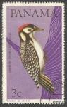 Sellos de America - Panamá -  Black-cheeked Woodpecker (Melanerpes pucherani) (1965)