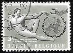 Sellos de Europa - Bélgica -  Declaración Universal de los Derechos Humanos