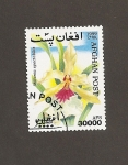 Stamps : Asia : Afghanistan :  Flor Miltonia