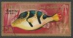 Sellos del Mundo : Asia : Emiratos_Árabes_Unidos : Umm Al Qiwain - Canthigaster cinctus (1967)