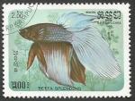 Sellos del Mundo : Asia : Camboya : Siamese Fighting Fish (Betta splendens) (1985)