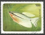 Sellos del Mundo : Asia : Camboya : Pearl Gourami (Trichogaster leeri) (1985)
