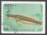 Sellos del Mundo : Asia : Camboya : Giant Snakehead (Channa micropeltes) (1985)