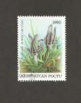 Sellos del Mundo : Asia : Azerbaiyán : Flor Iris aucutiloba