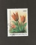 Stamps : Asia : Azerbaijan :  Flor Tulipa eichleri