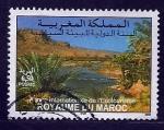 Sellos de Africa - Marruecos -  Año internacional Ecosistema