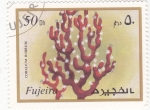 Stamps United Arab Emirates -  CORAL