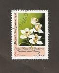 Stamps : Africa : Somalia :  Flor Cimbidium iosana