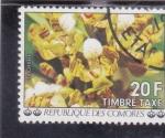 Stamps : Africa : Comoros :  flores- ORQUIDIA
