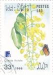 sello : Asia : Afganistán : flores- CASSIA FISTULA