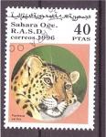 Stamps Spain -  serie- Felinos