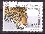 Sellos de Africa - Somalia -  serie- felinos
