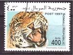 Stamps Somalia -  serie- felinos