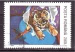 Sellos de Europa - Rumania -  El tigre en el circo