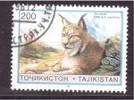 Sellos de Asia - Tayikistán -  lince
