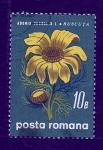 Stamps Romania -  Adonis Ruscuta